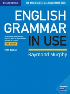 English Grammar in Use: Book with Answers 5E